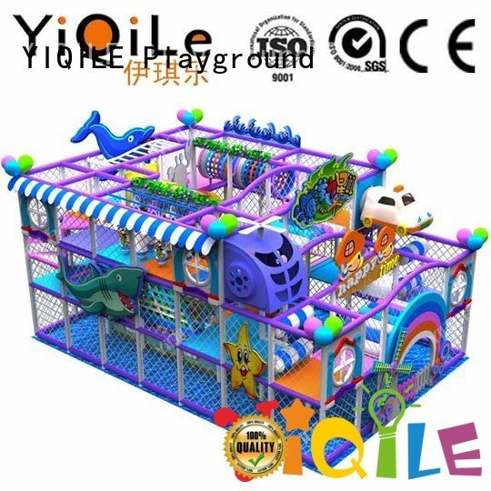 YIQILE Brand park kid playground indoor playground manufacturer animal